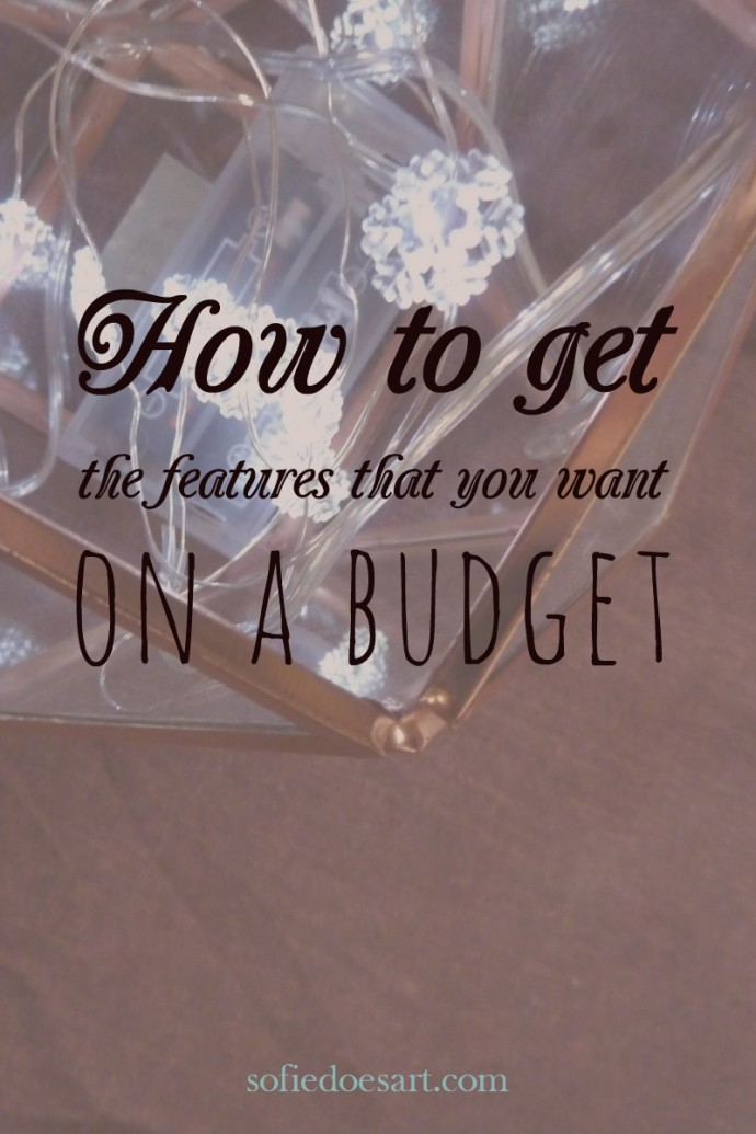How to get the features that you want on a budget and make you blogging easier.